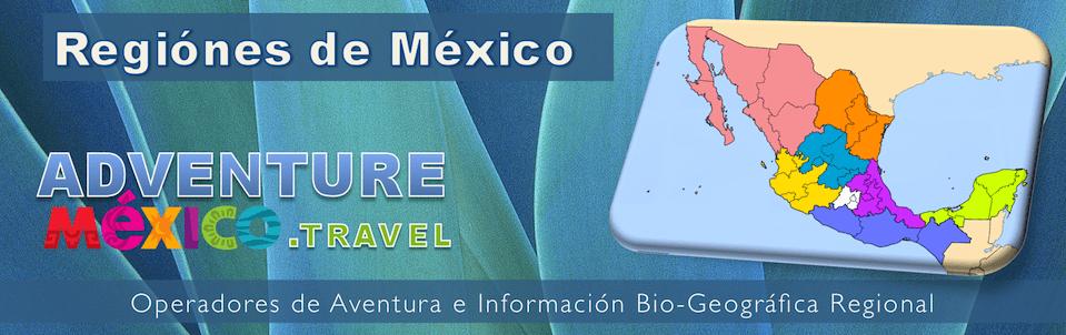 aventuras en mexico operadores aventura