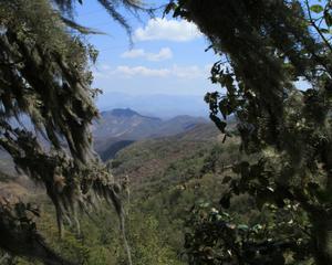 ecoturismo chayotepec oaxaca thumbnail